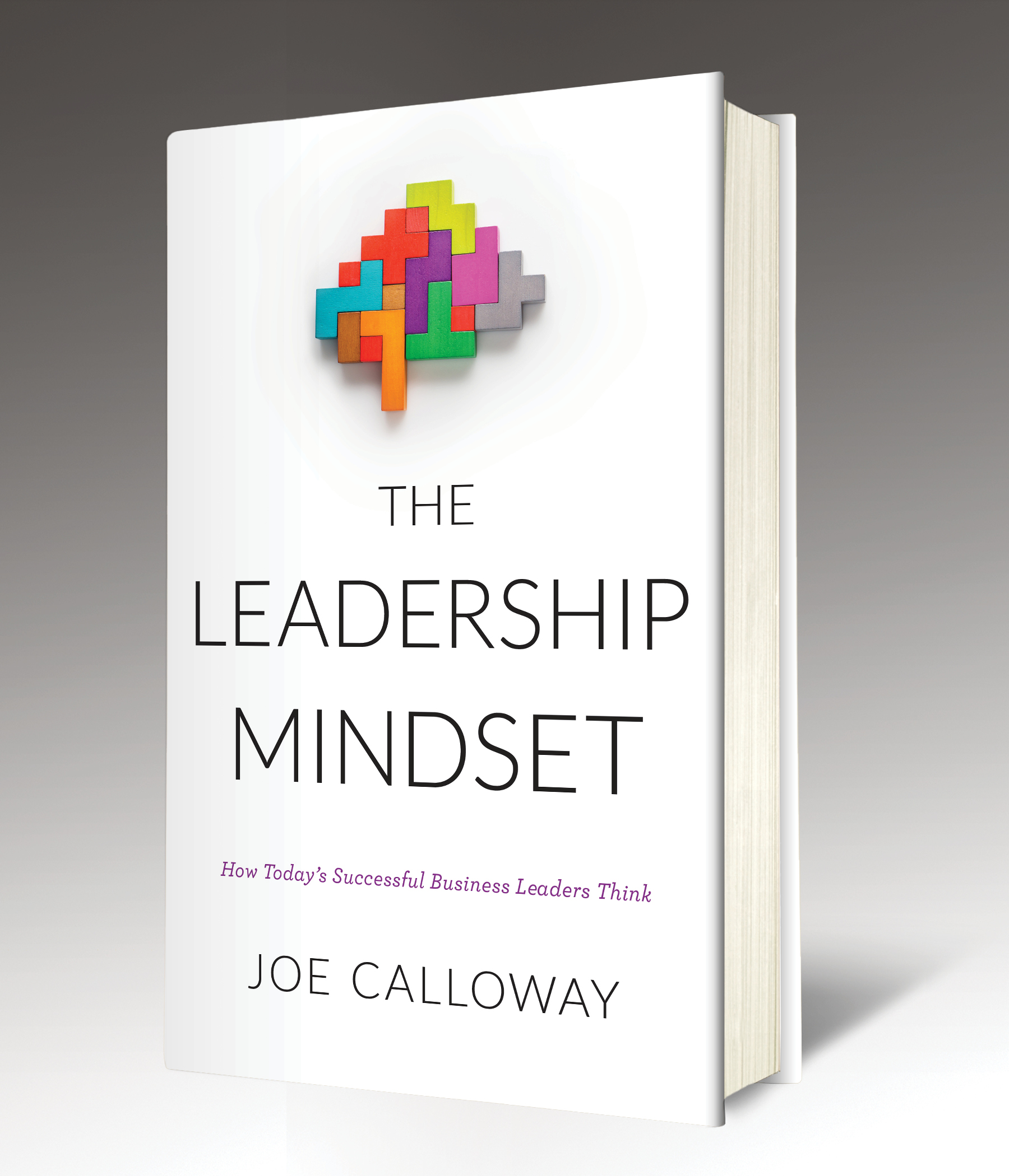 The Leadership Mindset by Joe Calloway