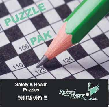 Safety & Health Puzzles - You can Copy